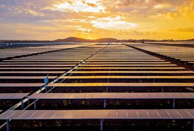 This photograph is of the sunrise over a solar panel farm. The panels reflect the new daylight
